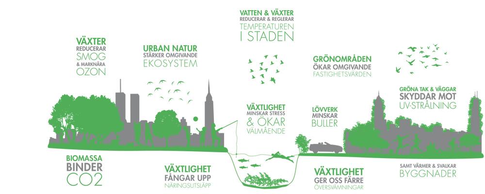 Projektet C/O City - Stockholms miljöbarometer